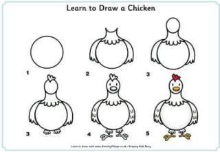 Cara Menggambar Ayam