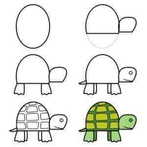 Cara Menggambar Kura-Kura