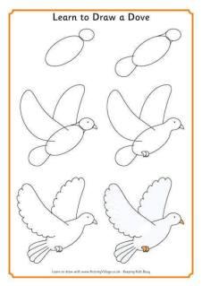 Cara Menggambar Burung Merpati